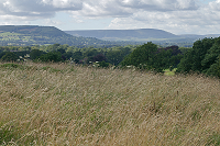 Field on Broken Brow, Whalley